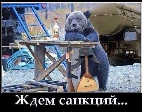 ждём санкций.jpg