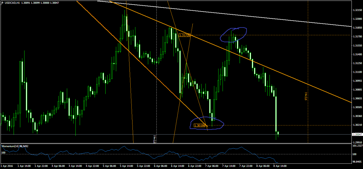 USDCADH1   скрипт.png