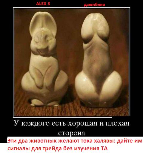 зайцы.png